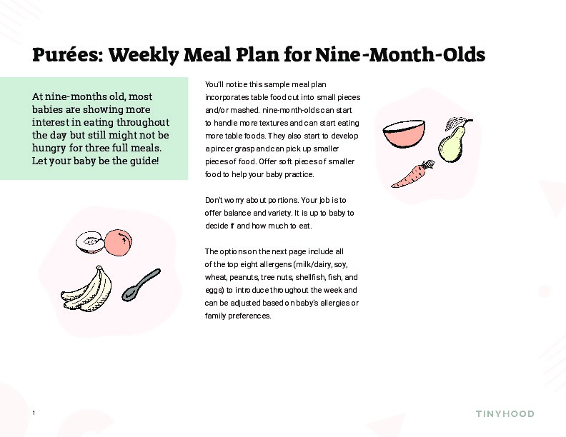 Weekly Meal Plan for 9 Month Olds Preview Image