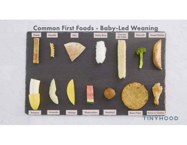 Common First Foods - Baby-Led Weaning Preview Image