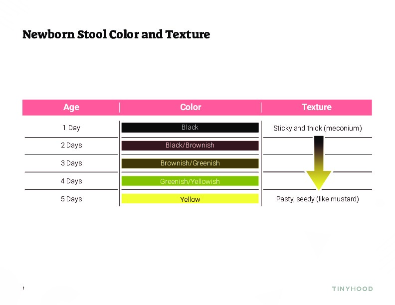 Newborn Stool Color Chart Preview Image