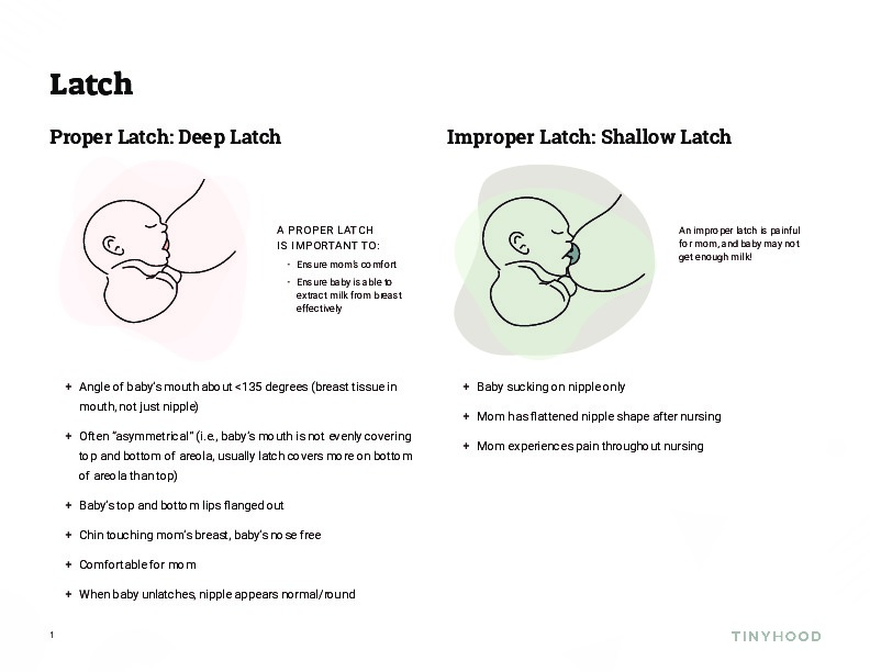 A Guide to Baby's Latch Preview Image