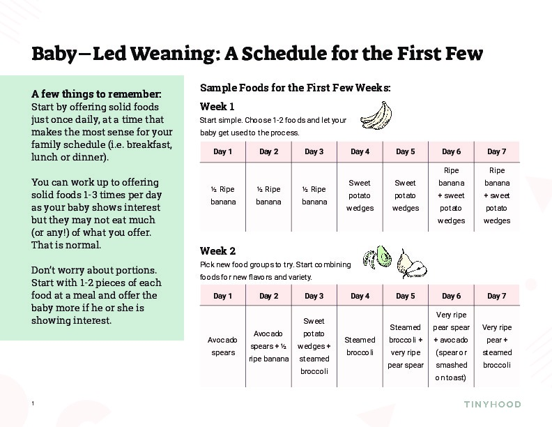 Feeding Schedule for the First Few Weeks of BLW Preview Image